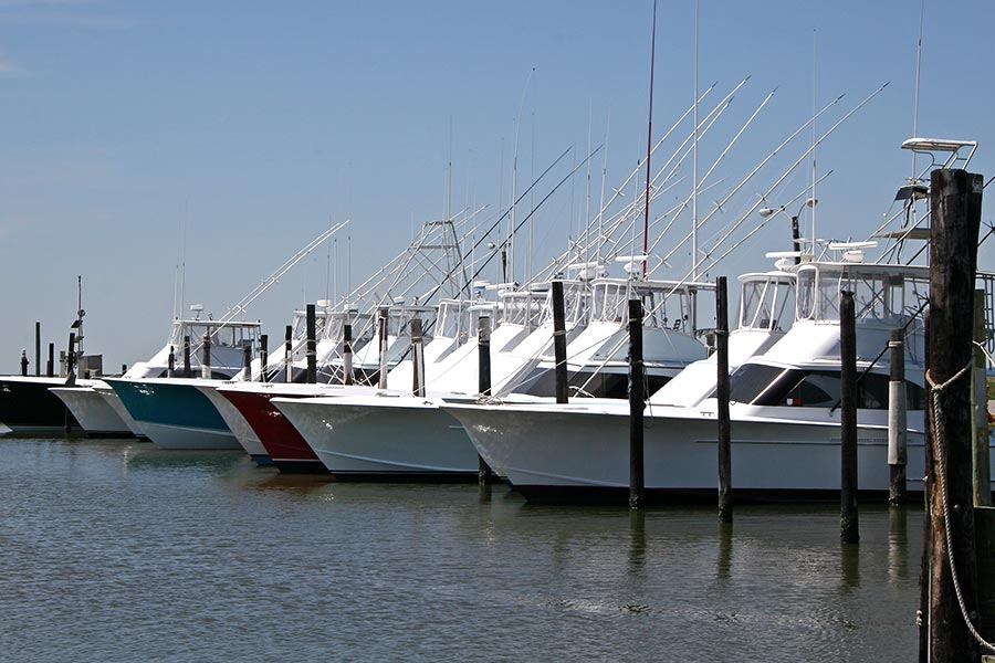 Sport fishers lined up at the marina ready for the next adventure.